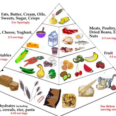 FoodPyramidMain1